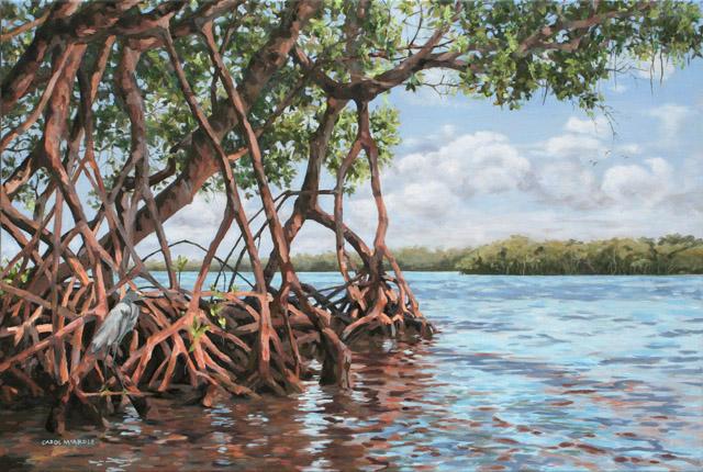 Mangrove Paintings
