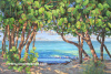 "Sea Grape Greeting 40""x60"""