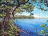 "Mangrove View 22"" x 30"" giclee print on stretched canvas"
