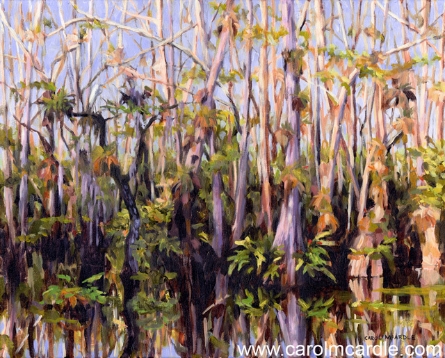 "Magic and Mystery in the Big Cypress Preserve 16""x20"""