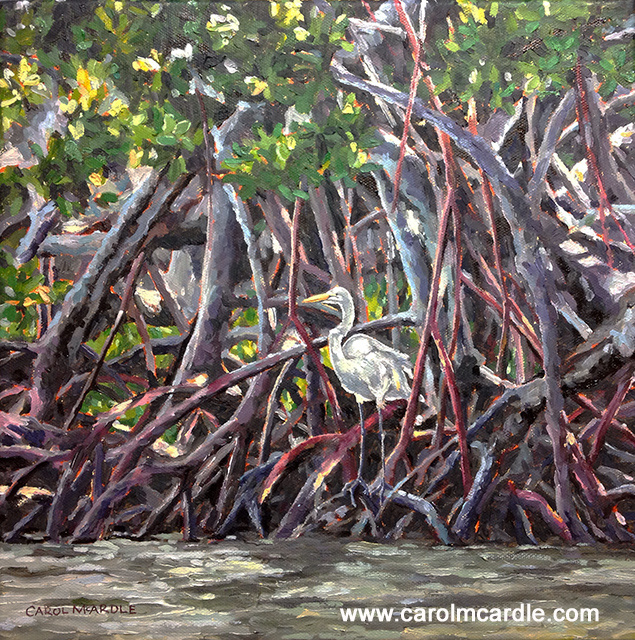 "Perched in the Mangroves 12""x12"""