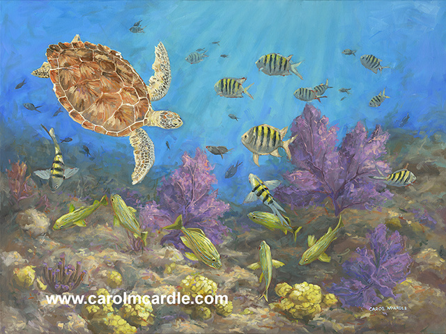 "Gathering at the Reef 30""x40"""
