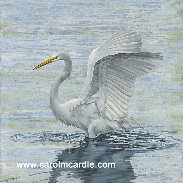 Egret Wings