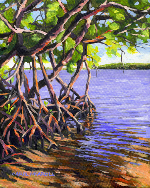 Mangroves Ripples