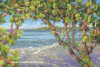 """Beach Fiesta"" giclee print on stretched canvas 20"" x 30"""